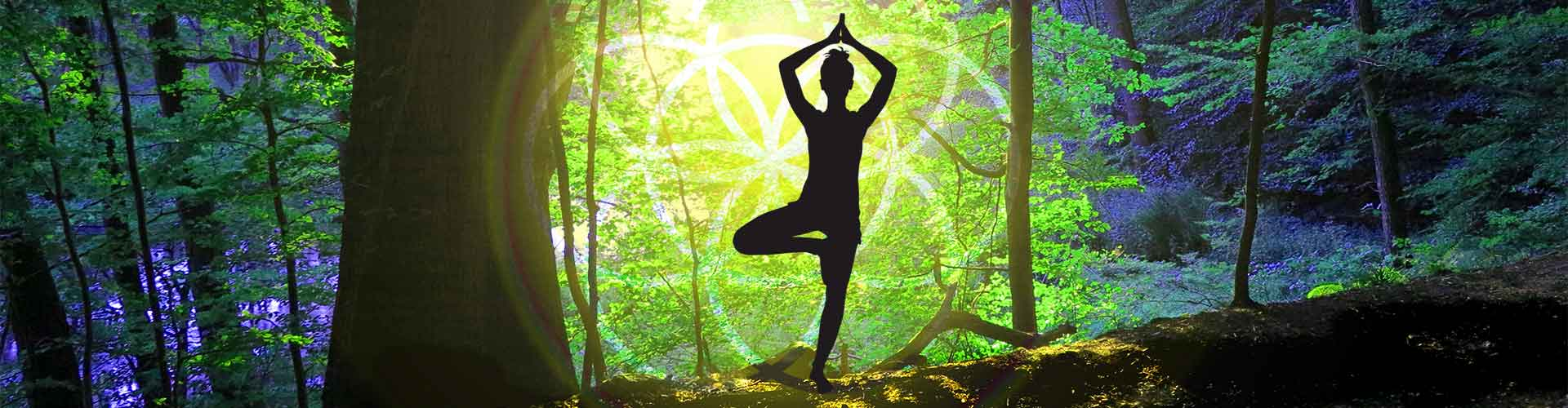 Vrikshasana (Baum) Asana auch als Fotoleinwand